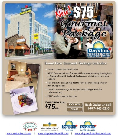 20101116 days inn email newsletter 390x450
