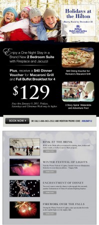 20101210 hilton fallsview email newsletter 198x450