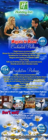 20130422 skylon holiday inn email newsletter 155x450