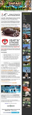 20130710 safari niagara email newsletter 125x450