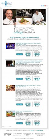 20140102 falls avenue resort email newsletter 161x450