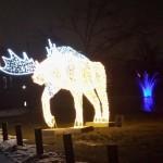 2014 2015 opg winter festival of lights 07 150x150