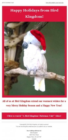 20141217 bird kingdom email newsletter 219x450