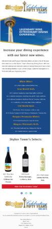 20160819_skylon_tower_email_newsletter